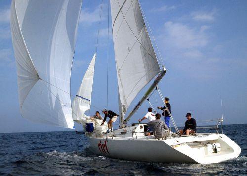 sailing jib sail