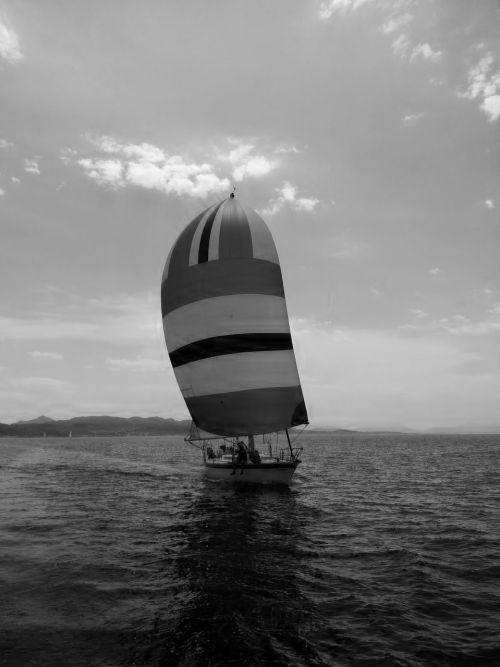 sailing summer yachting