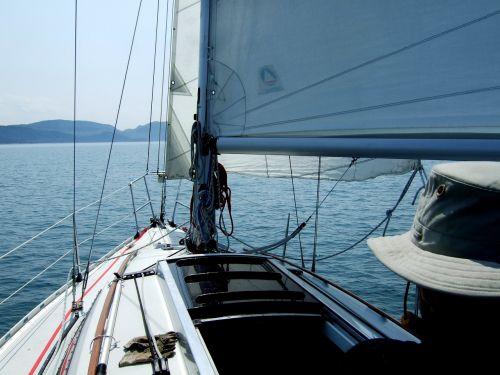 sailing boat sailing sailboat