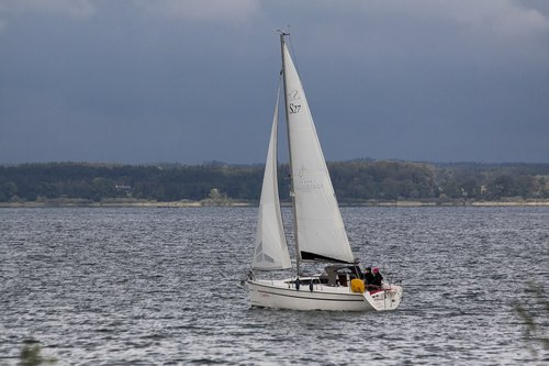 sailing boat  crew  man