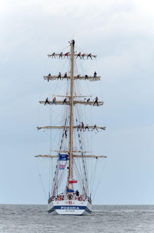 sailing boat regatta boat