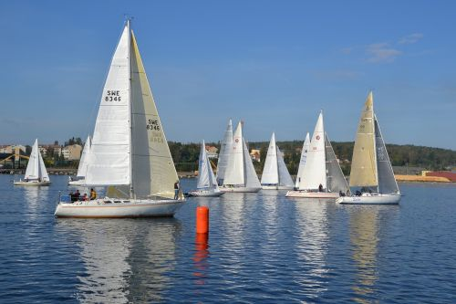 sailing boats sailing race sweden