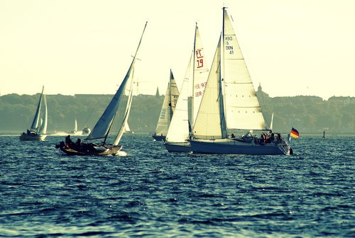 sailing boats  water  kieler firth