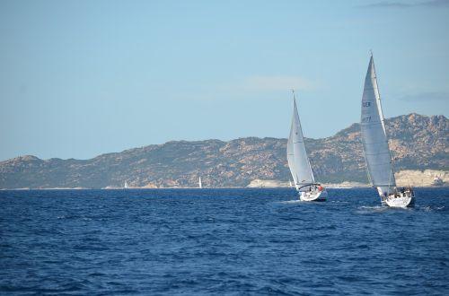 sailing boats sail boats