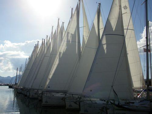 sailing boats yacht boating
