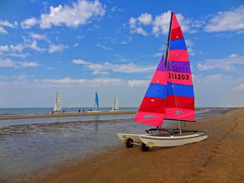 sailing catamaran catamaran sailing