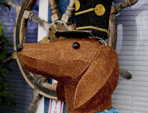 Sailor Dog Close-up