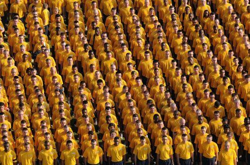 sailors all hands navy
