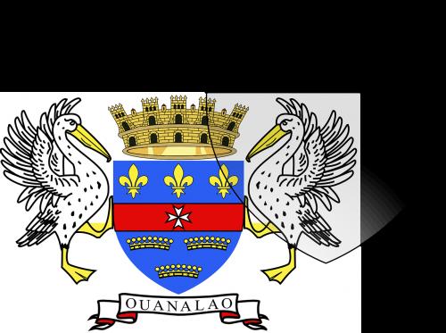 saint barthelemy flag national flag