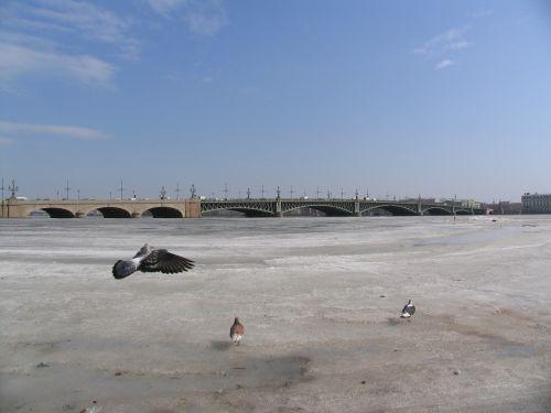 saint-petersburg neva river russia