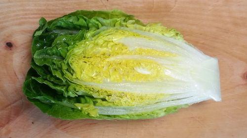 salad lettuce heart frisch