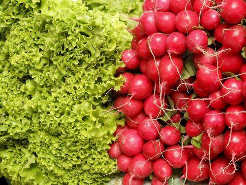 salad radishes vegetables