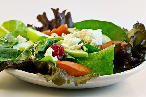 salad fresh food