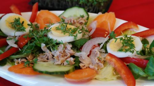 salad salad plate tuna