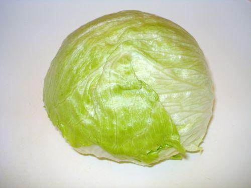 salad iceberg lettuce head of lettuce