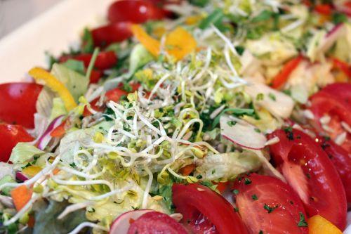 salad buffet cold buffet