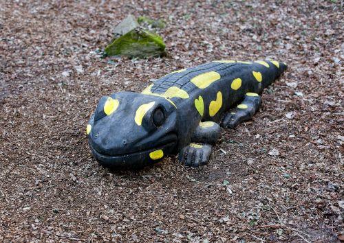 salamander large salamander wooden salamander