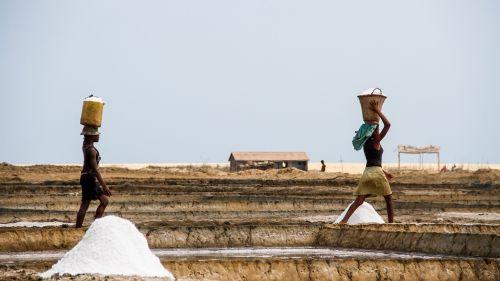 saline salt landscape