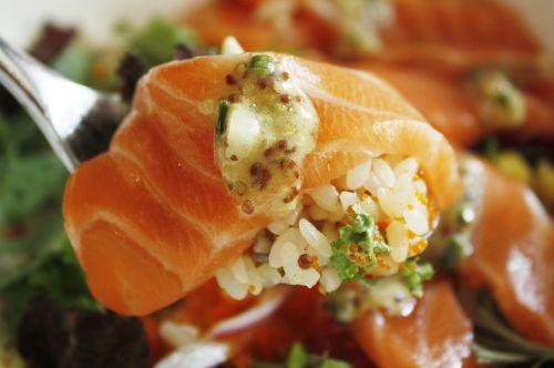 salmon salmon roe sushi salmon roe