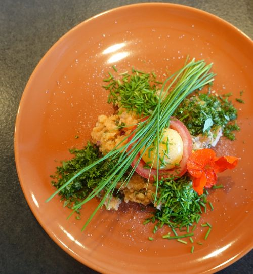salmon herbs chives