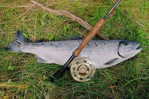salmon rod reel