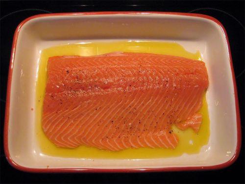 salmon salmon fillet wild salmon