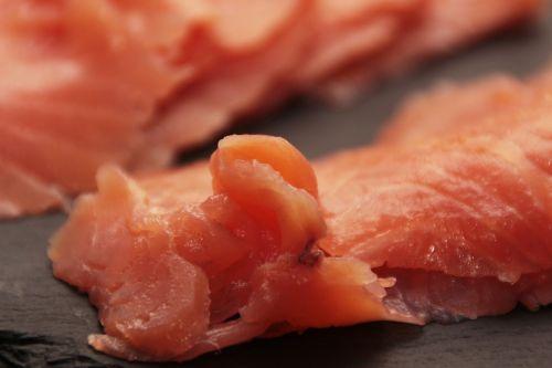 salmon fish raw