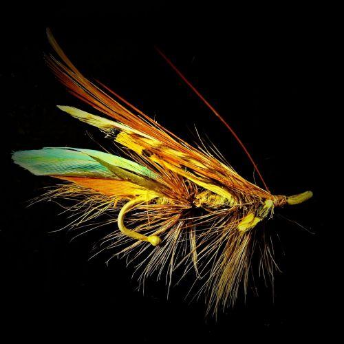 salmon fly fantasy brooch