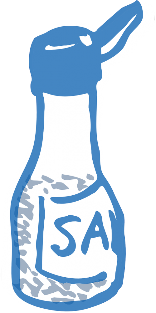 salt salt shaker saltshaker