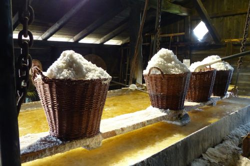 salt baskets industry