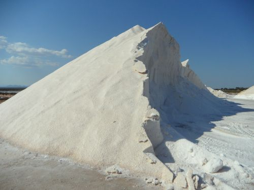 salt salzberg white