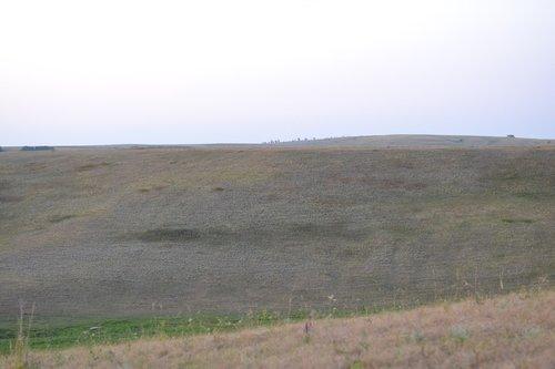 samara  meadows  samara meadows