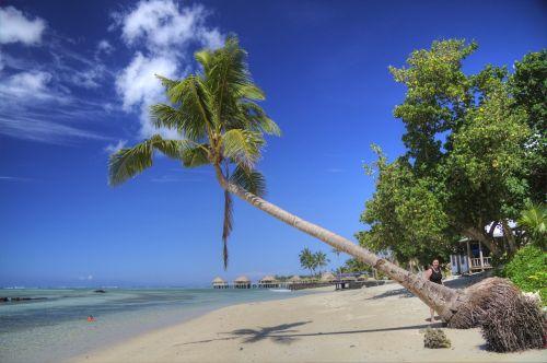 samoa tropics beach