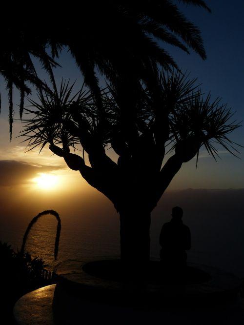 samoga viewpoint el sauzal