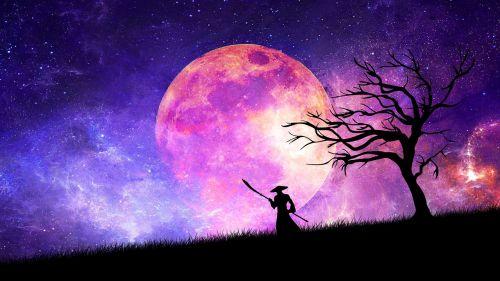 samurai moon cosmos