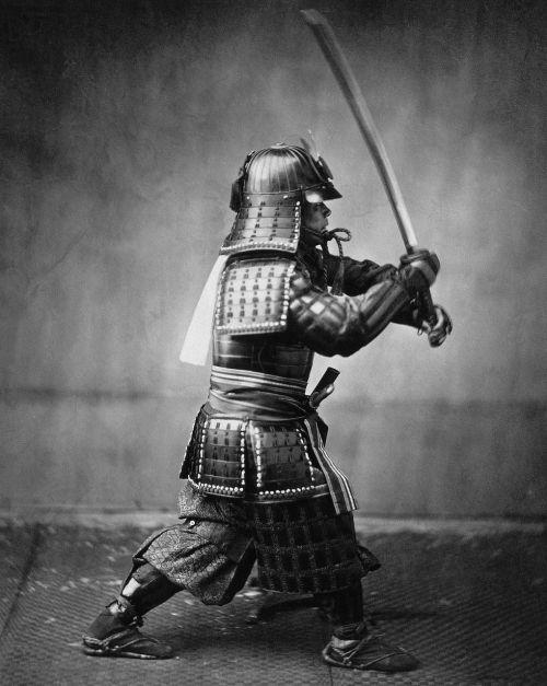samurai warrior samurai fighter
