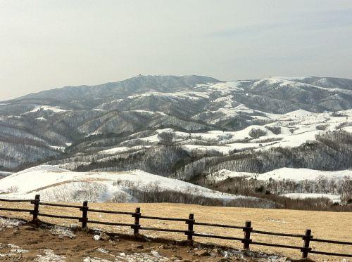 samyang ranch gangwon do snow