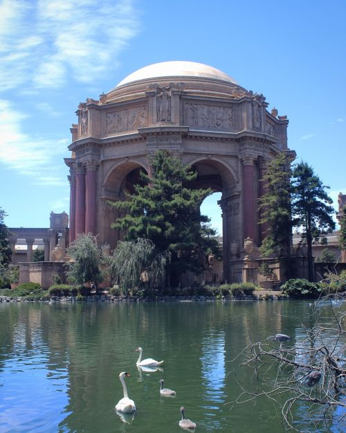 san francisco palace of fine arts dome