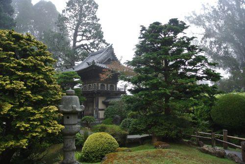 san fransisco fog pagoda