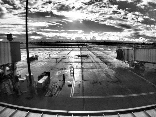 san jose international airport terminal travel