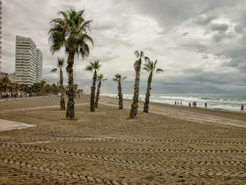 san juan beach alicante after orchards