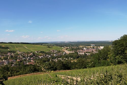 sancerre loire vineyard