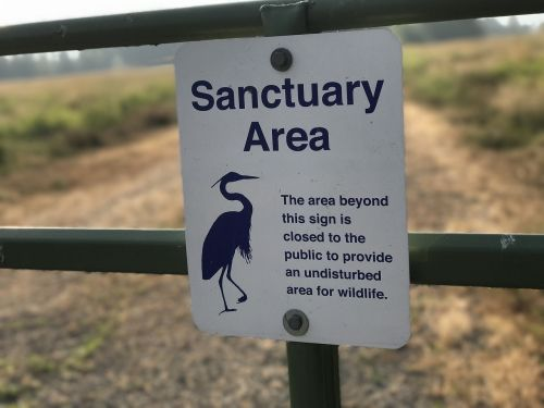 sanctuary wildlife nature