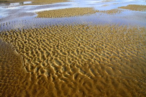 sand vacation coast