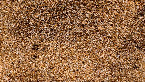sand grains of sand sand beach