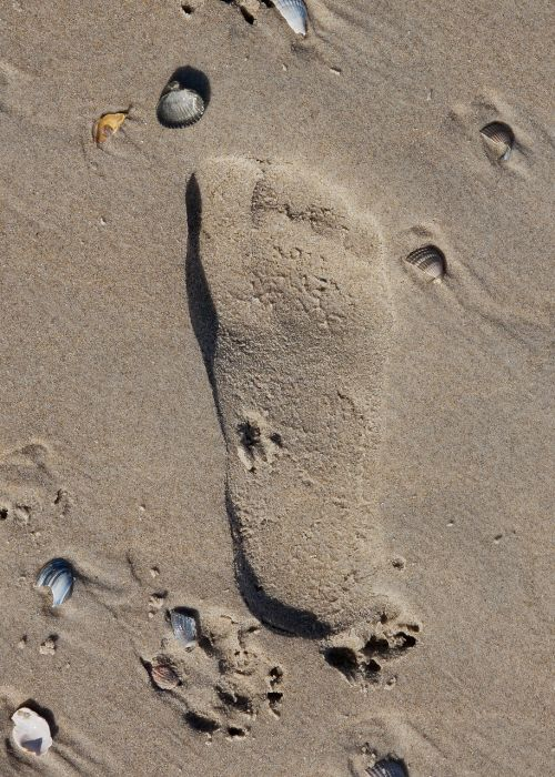 sand beach footprint