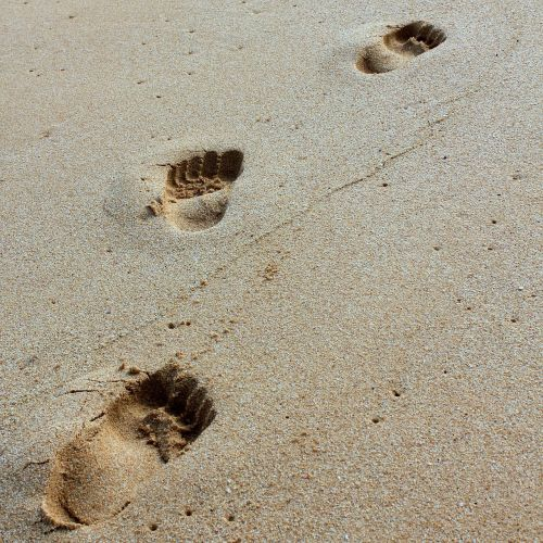 sand footprint beach