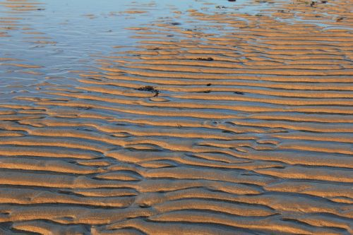 sand ripples lines