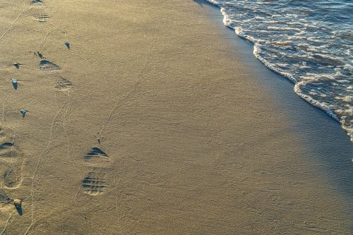 sand beach footprints