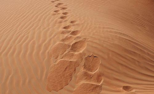 sand desert sandy